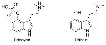 psilocybine structure